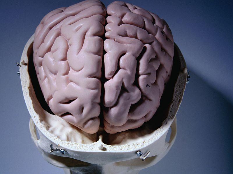 β-2 Adrenergic Agonists May Help Fight Parkinson's Disease