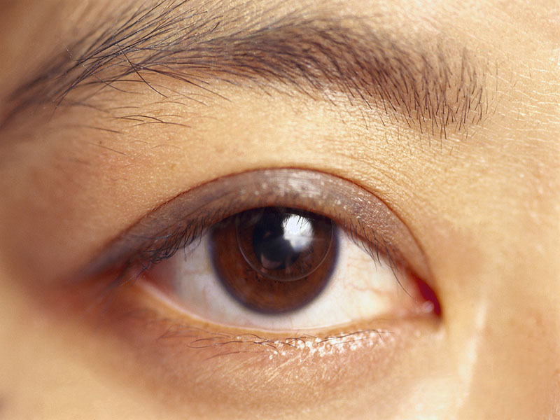 Retinal Sensitivity Linked to Cognitive Status in T2DM