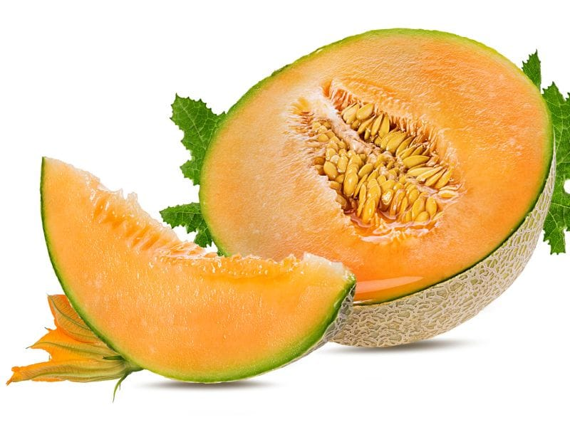 CDC: <i>Salmonella</i>-Tainted Melon Outbreak Appears to Be Over