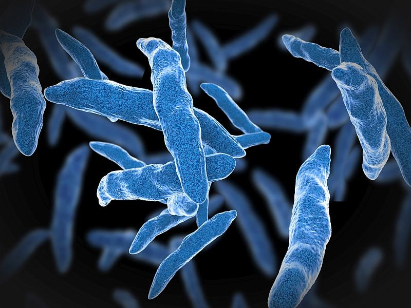 Rifampin Similar to Isoniazid for Preventing Active Tuberculosis