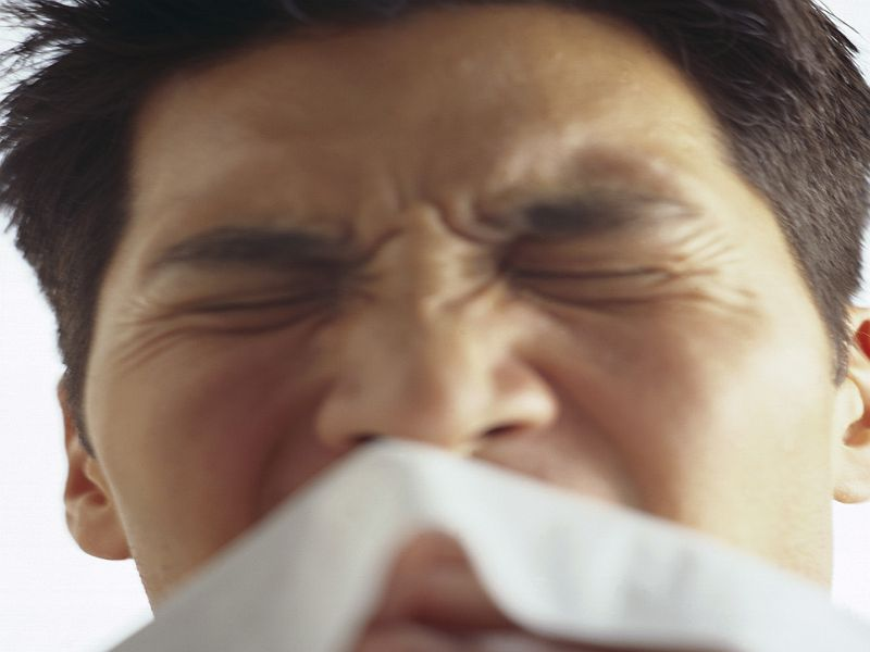 Guidance Issued for Seasonal Allergic Rhinitis Pharmacologic Tx