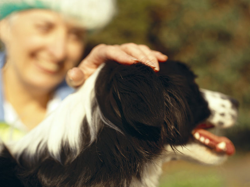Pets Provide Support to People With Mental Health Conditions