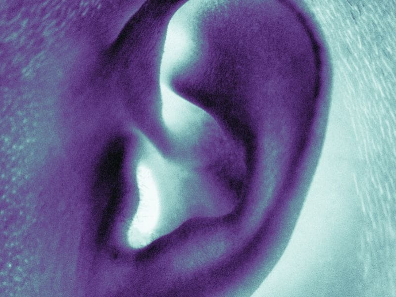 Summer Sounds Can Cause Hearing Damage