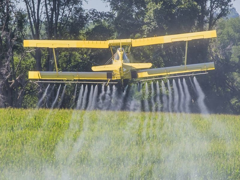 Court Rules That U.S. Must Halt Sales of Pesticide Chlorpyrifos