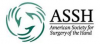 2014 American Society for Surgery of the Hand(ASSH) Electives in Hand Surgery
