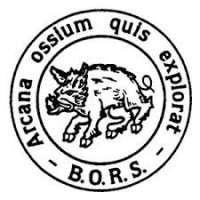 British Orthopaedic Research Society (BORS)