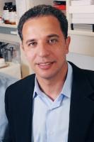 Hesham A. Sadek