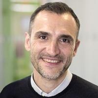 Federico Mingozzi