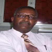 Abubakr Darrag Salim Ahmed