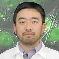 Haruki Hasegawa