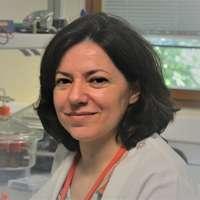 Maria Goreti Ferreira Sales