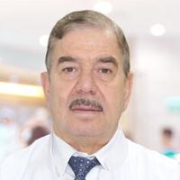 Abdul Karim Msaddi