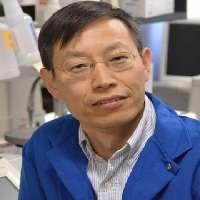 Huaijun Zhou