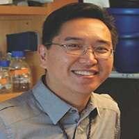 Lee Zou