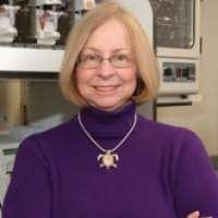 Cheryl A. Winkler