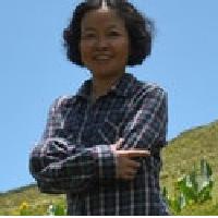 Tiaoying Li