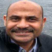 Yasser Wali